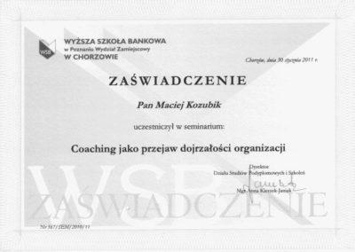 Coaching-jako-przejaw-dojrzaoci-organizacji_Maciej-Kozubik_coach_trener-biznesu_trener-sprzedaży
