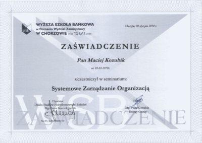 Systemowe-zarzdzanie-organizacj-Maciej-Kozubik_coach_trener-biznesu_trener-sprzedaży
