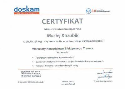 Maciej Kozubik - warsztayty narzędziowe efektywnego trenera